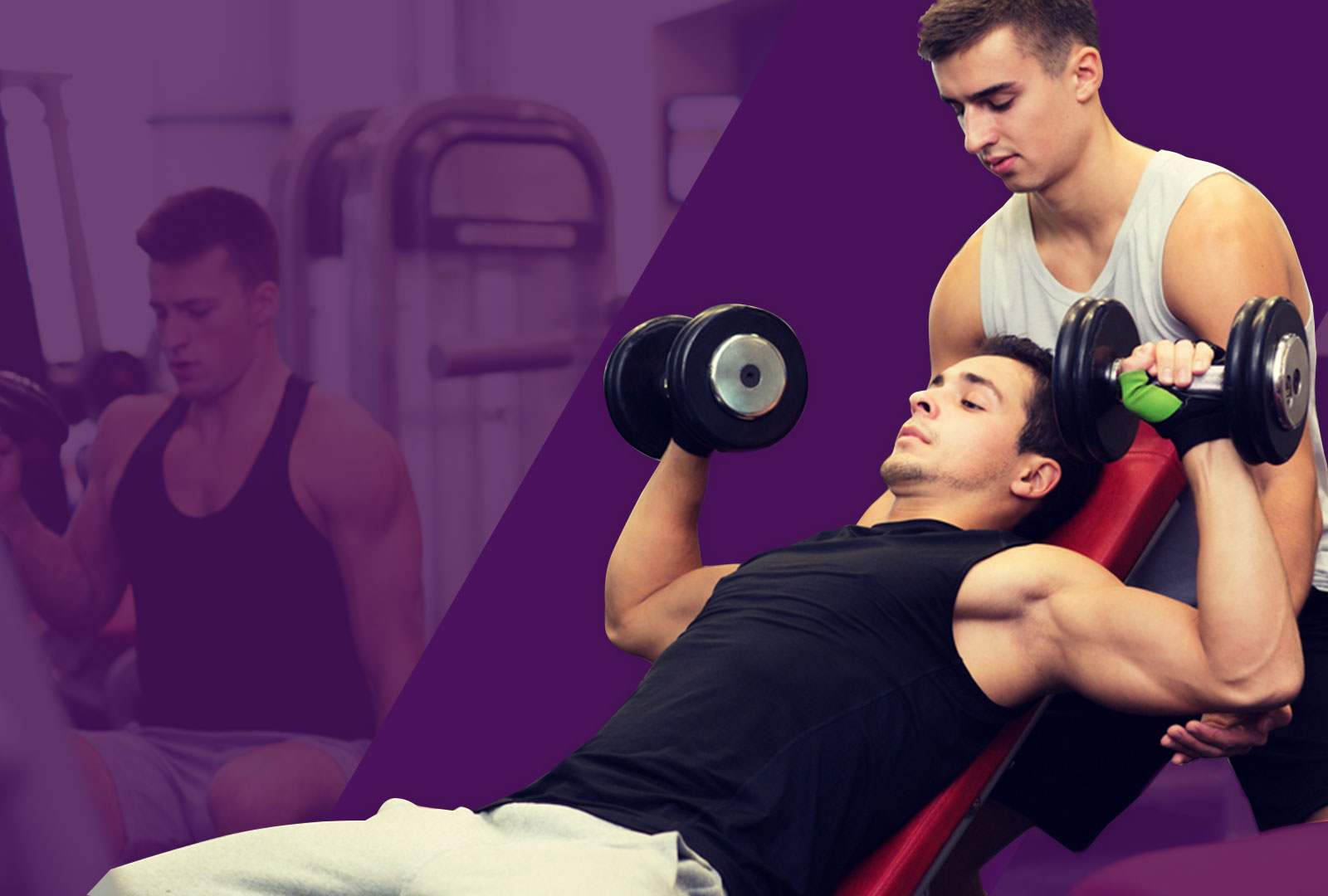 Master personal trainer certification ifpa fitness master personal trainer certification 1betcityfo Images